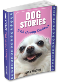 Dog Stories With Happy Endings paperback version